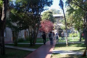 Instituto de Matemáticas PUCV cuenta con todos sus programas académicos acreditados
